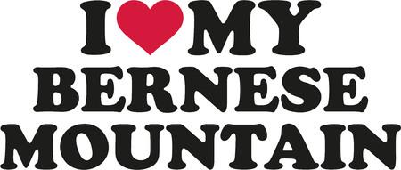 bernese: I love my Bernese mountain