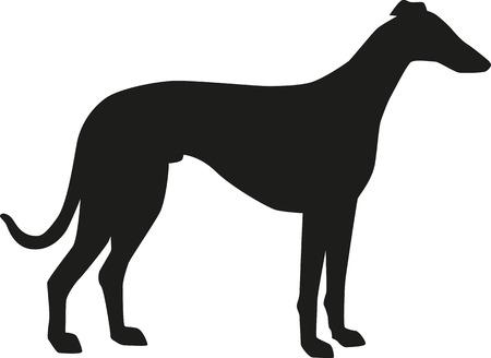 Greyhound silhouette