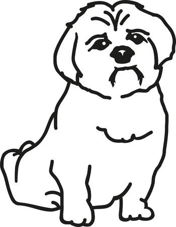 shih tzu: Shih Tzu contours Illustration