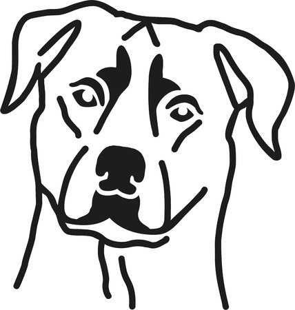 Rottweiler head