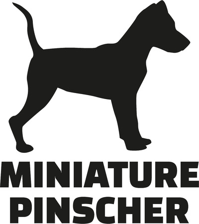 Miniature pinscher with breed name