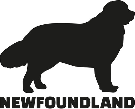 newfoundland: Newfoundland with breed name Illustration