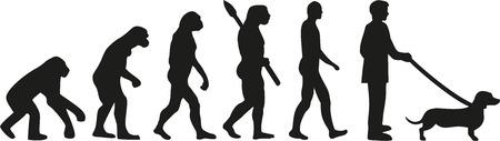 dachshund: Dachshund evolution