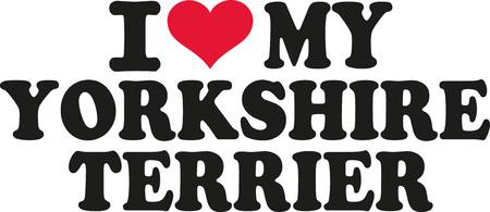 yorkshire: I love my yorkshire terrier