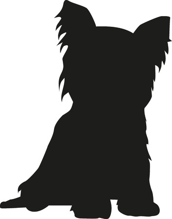 Yorkshire Terrier sitting silhouette 向量圖像