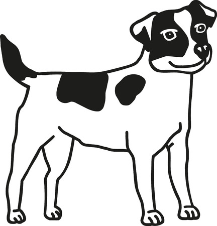 jack russell terrier: Jack Russell Terrier Illustration