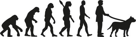 pit bull: Pit bull evolution
