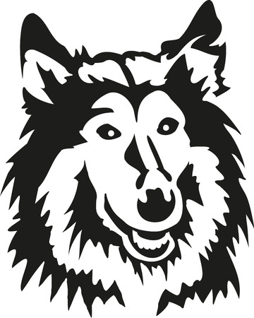 border collie: Rough collie head Illustration