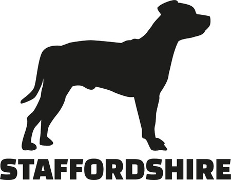 stafford: Staffordshire Terrier with breed name Illustration