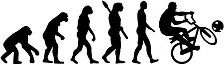 ancestors: Cycle ball evolution