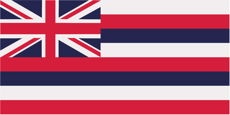 surfen: Hawaii flag