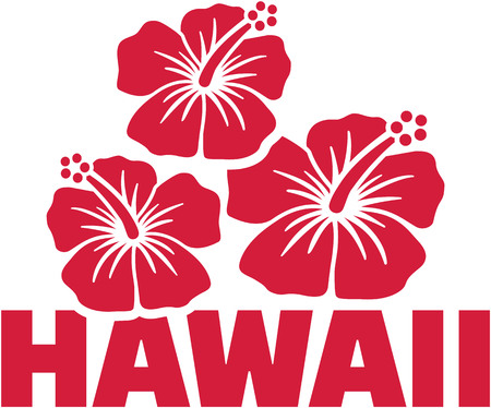 surfen: Hawaii word with hibiscus flowers