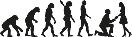 evolución propuesta