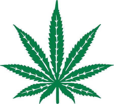 Marijuana leaf with details