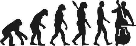 contrabass: Contrabass evolution Illustration