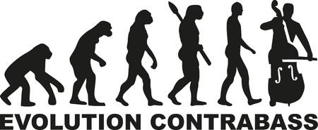 contrabass: Evolution contrabass player