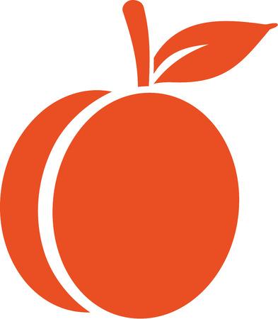 Apricot icon Illustration