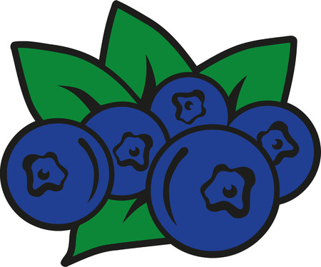 blueberries: Blueberries with green leaves