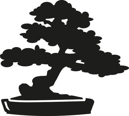 asian gardening: Bonsai Tree silhouette