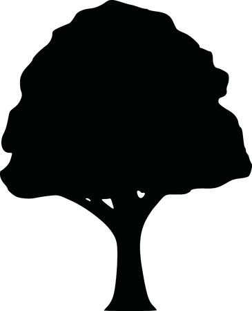 deciduous tree: Silhouette of a deciduous tree