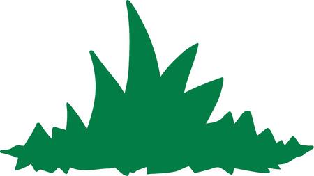 tuft: Tuft of grass icon Illustration