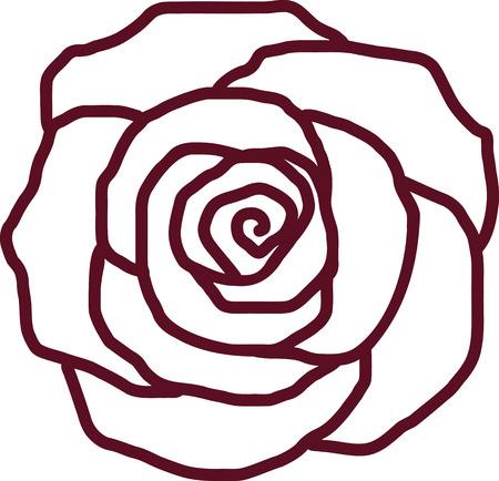 バラの花びらの概要