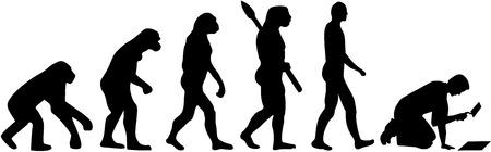 Fliesenleger Evolution