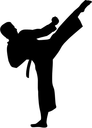 Karate fighter silhouette