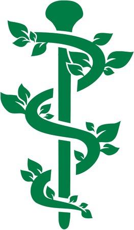 Natural green caduceus for Alternative Practitioner Illustration