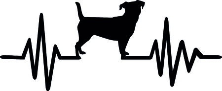 Heartbeat pulse line dog with jack russel silhouette black.