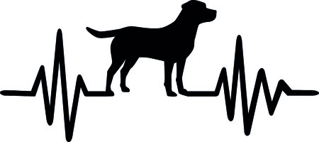 Heartbeat pulse line dog with labrador silhouette black