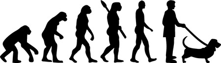 Basset hound evolution with silhouette illustration.