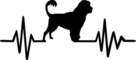 Heartbeat pulse line with Portuguese water dog silhouette.