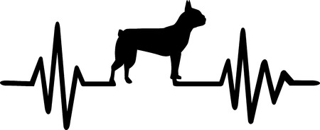 Heartbeat pulse line with Boston terrier dog silhouette.