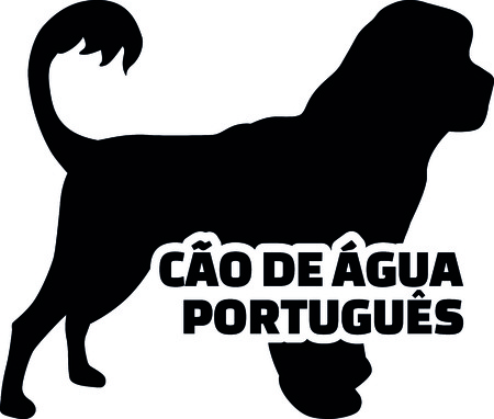 Cao de gua portugues silhouette real with word illustration.