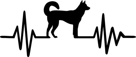 Heartbeat pulse line with kai ken dog silhouette illustration.  イラスト・ベクター素材