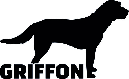 Griffon silhouette real with word illustration.