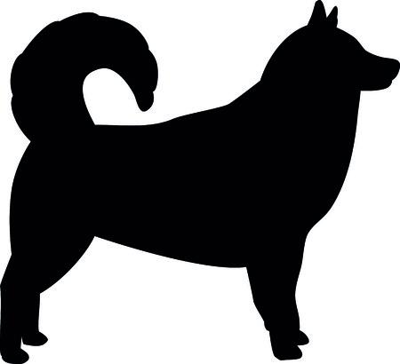 Alaskan malamute silhouette real in black illustration.