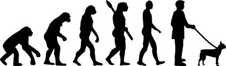 Boston terrier evolution with silhouettes illustration.  イラスト・ベクター素材