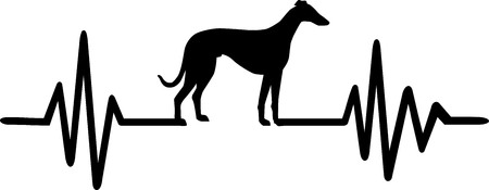 Heartbeat pulse line with Whippet dog silhouette