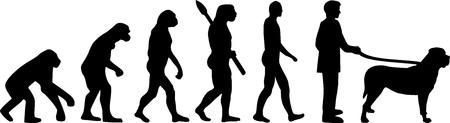 Mastiff evolution Darwin with silhouettes illustration. Illustration