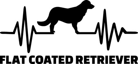 Heartbeat pulse line with Flat Coated Retriever dog silhouette