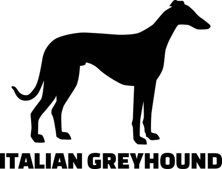 Italian Greyhound silhouette real with word