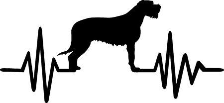 Heartbeat pulse line with Irish Wolfhound silhouette