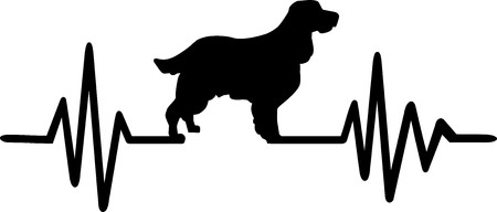 Heartbeat pulse line with English Springer Spaniel silhouette