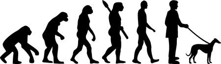 Italian Greyhound evolution development with silhouette Illustration