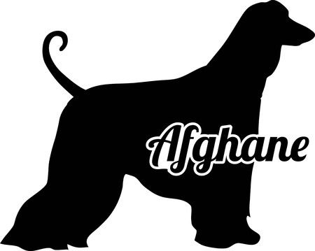 Afghan Hound silhouette real with word in german Illustration