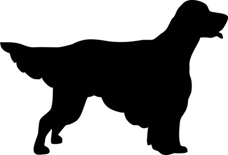 English Setter silhouette real in black