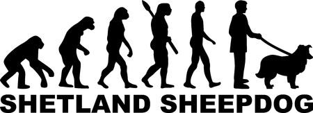 Shetland Sheepdog evolution with word in black