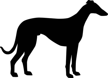 Italian Greyhound silhouette real in black Stock Illustratie